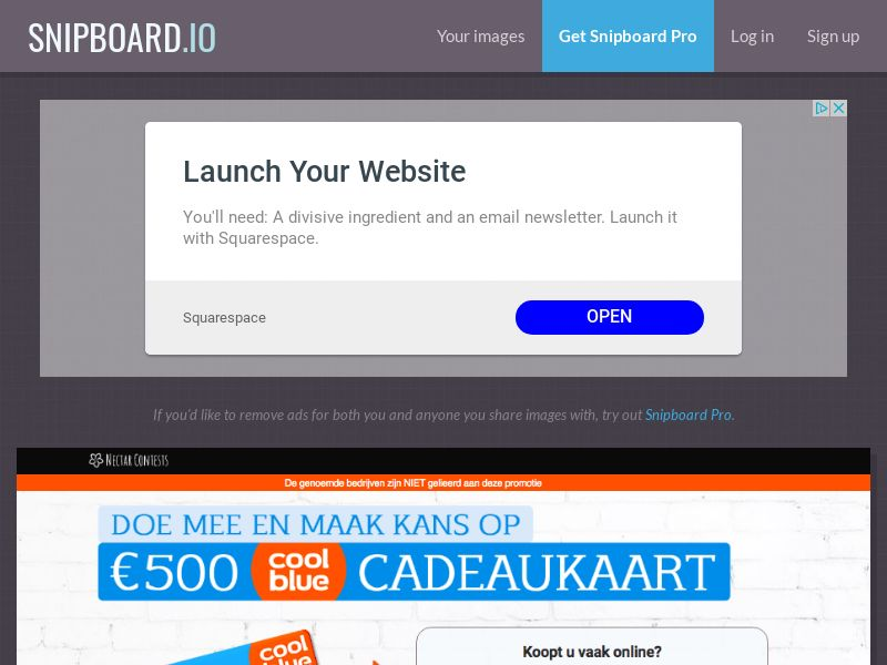 NectarContests - Cool Blue Giftcard 500$ NL - SOI