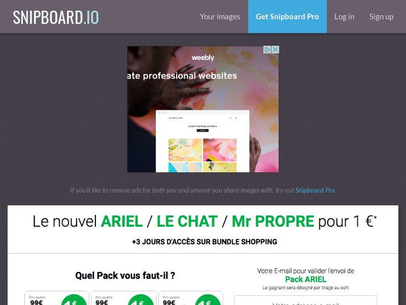 BundleShopping - Ariel, Le Chat, Mr Propre FR/BE - CC Submit