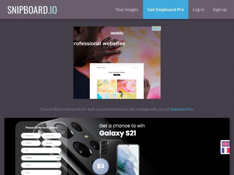 BigEntry - Samsung Galaxy S21 v1 CA - CC Submit (english/french)