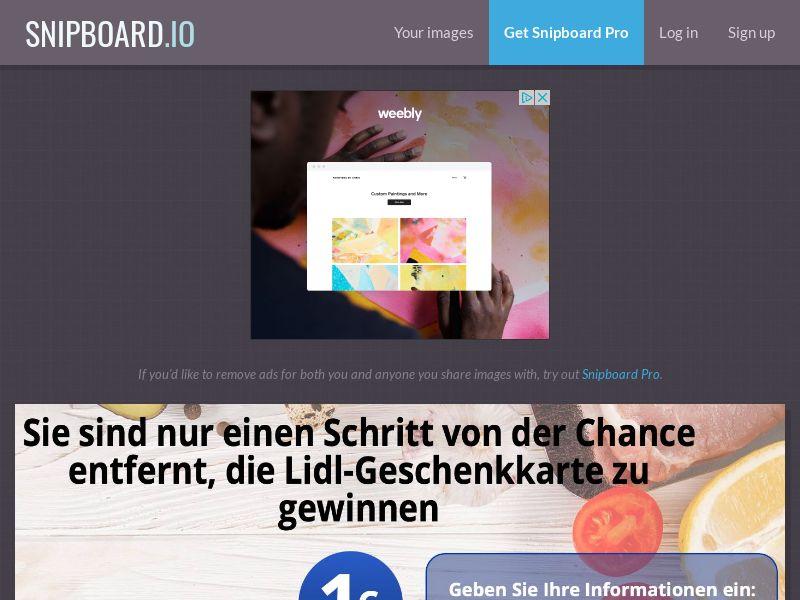 SteadyBusiness - Lidl Supermarket Giftcard LP49 DE - CC Submit