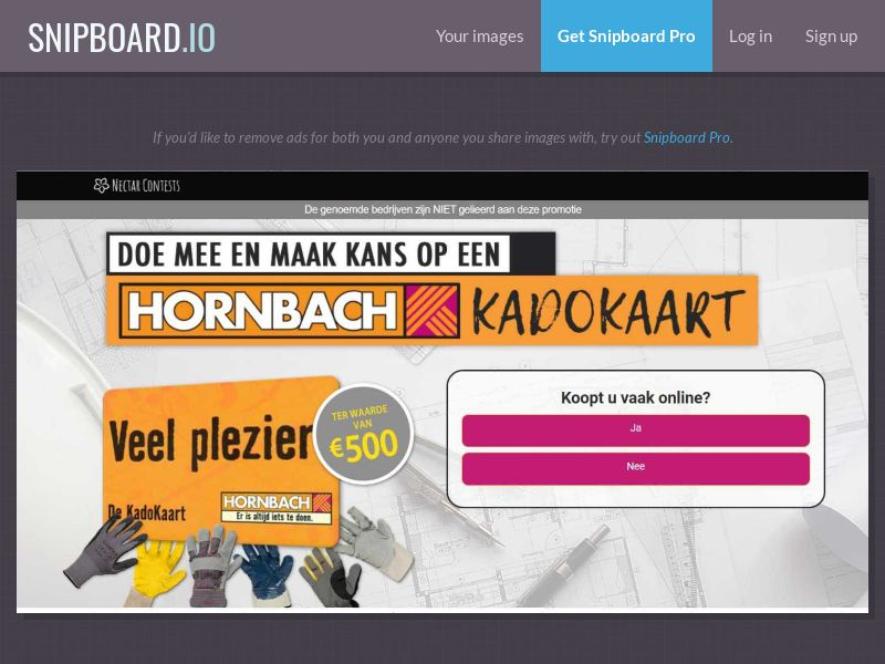 37370 - NL - NectarContests - Hornbach Giftcard $500 - SOI