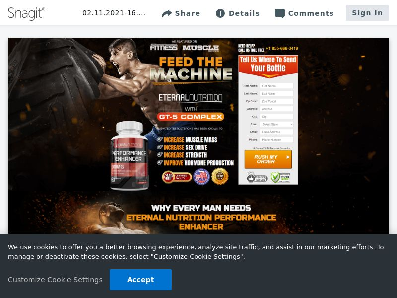 Eternal Nutrition Muscle SS | USA [Exclusive]