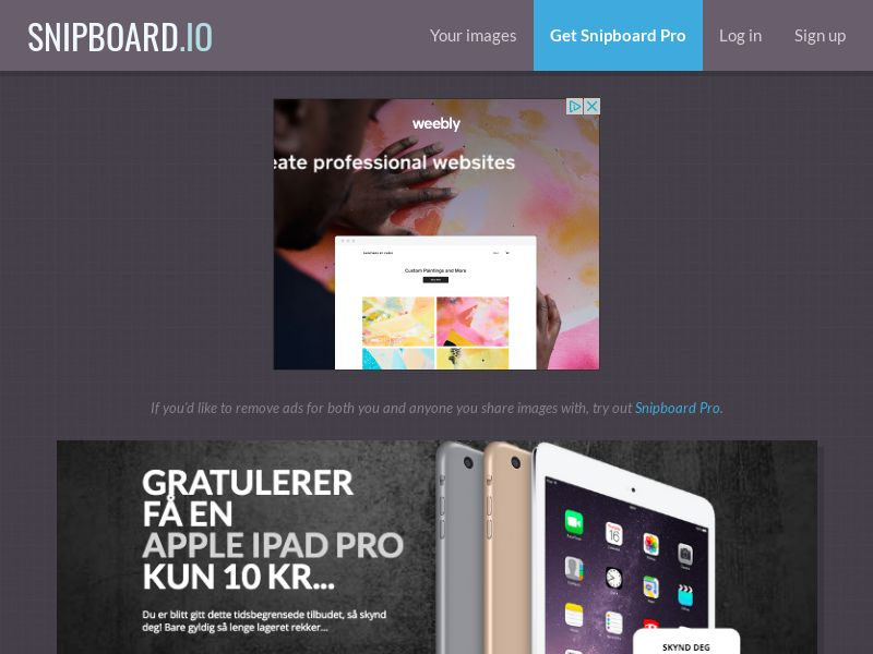 SteadyBusiness - iPad Pro LP10 NO - CC Submit