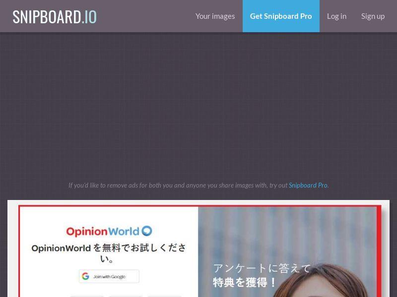 41831 - JP - Surveys - Opinion World (cap 50) - CP1F