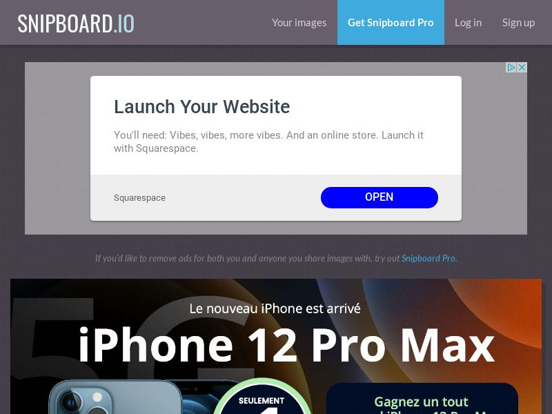 SteadyBusiness - iPhone 12 Pro Max LP64 FR - CC Submit