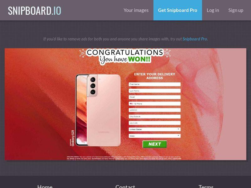 39756 - US - AbsoluteWinner - Samsung Galaxy S21 (Orange / Sand) - CC submit