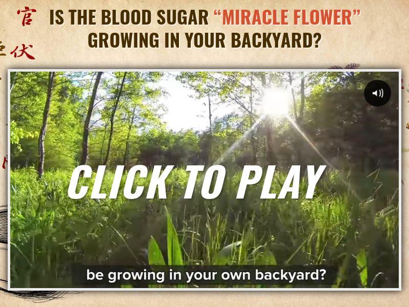 Blood Sugar Premier