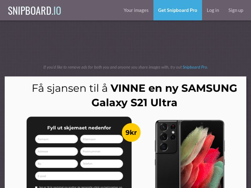 BigEntry - Samsung Galaxy S21 Ultra v1 NO - CC Submit