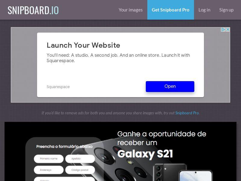 BigEntry - Samsung Galaxy S21 v1 PT - CC Submit