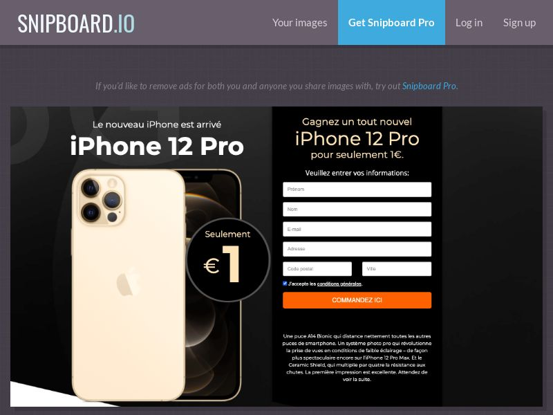 39170 - FR - SteadyBusiness - iPhone 12 Pro (LP 62 Rose Gold) - CC submit