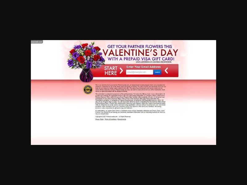 Valentine's Day Flowers - One Field