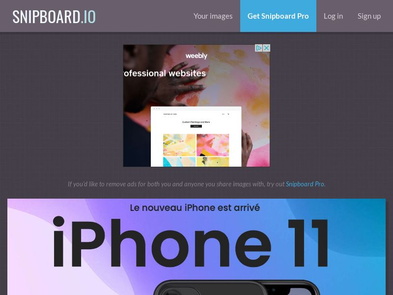 SteadyBusiness - iPhone 11 LP33 FR - CC Submit