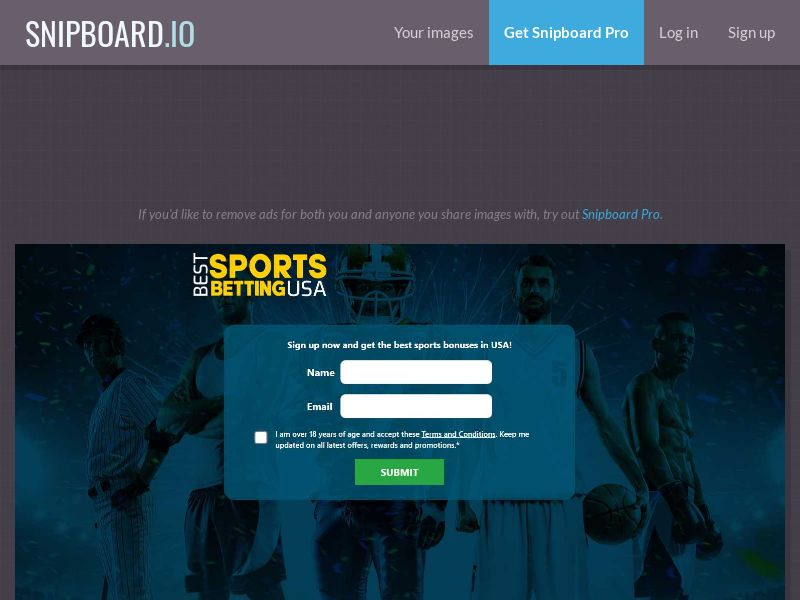 41040 - US - Gambling - Best Sports Betting - SOI - US - CPL - [NO incentive]