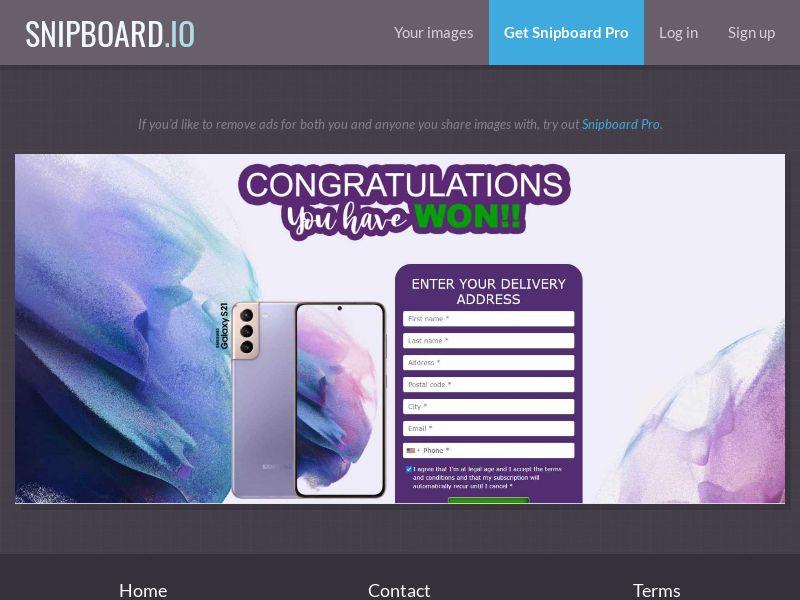 39798 - US - OrangeViral - Advidi - Samsung S21 - Only US - CC submit