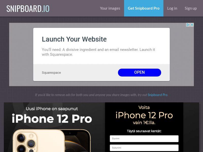 SteadyBusiness - iPhone 12 Pro LP62 FI - CC Submit