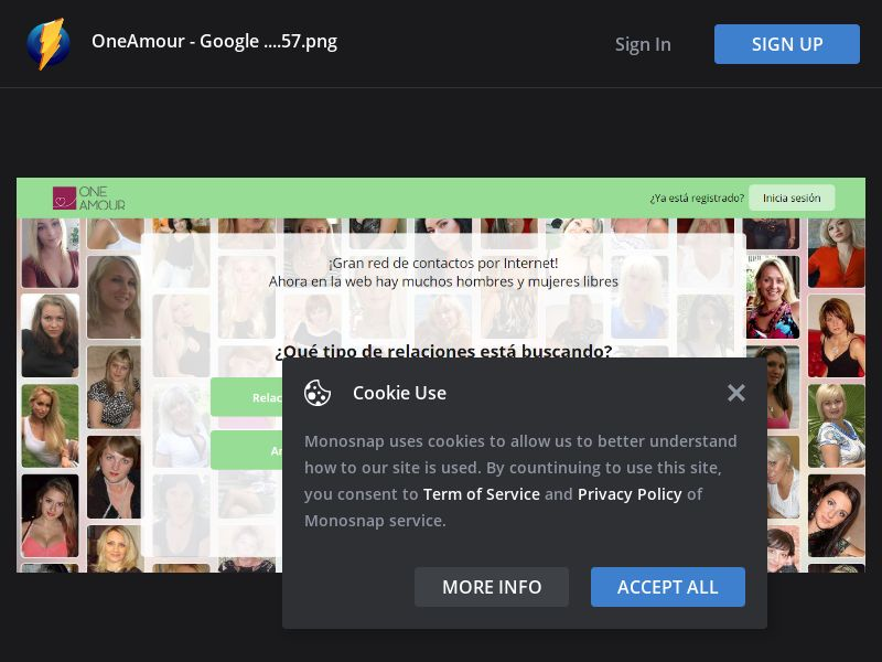 Multiple GEOs - Geo Group 4 - Oneamour - Online Dating +25 (Responsive)
