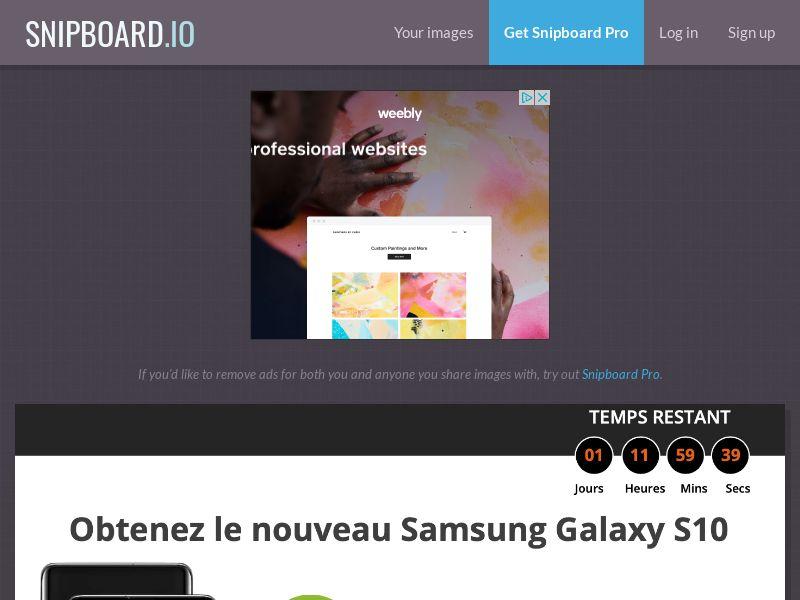 SteadyBusiness - Samsung Galaxy S10 LP34 FR - CC Submit