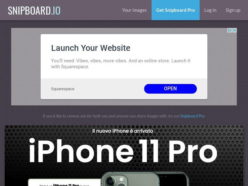SteadyBusiness - iPhone 11 Pro LP33 IT - CC Submit