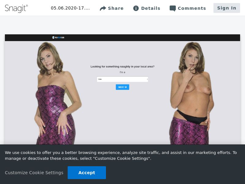 PickYourFling [WEB] (DOI)   US