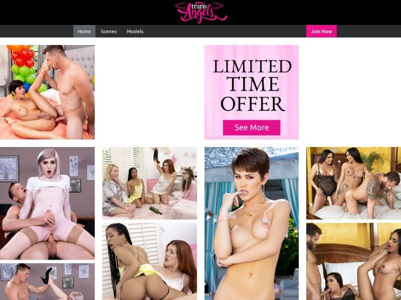 Trans Angels - Adult - Lifetime RevShare - Multi-Geo (50%)
