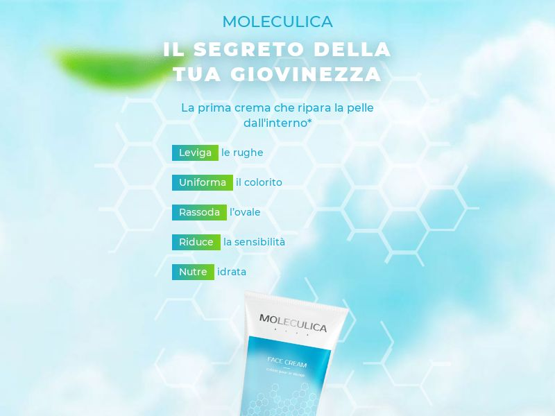 Moleculica - IT