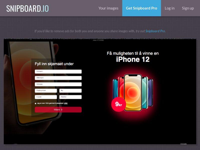 BigEntry - iPhone 12 v1 NO - CC Submit