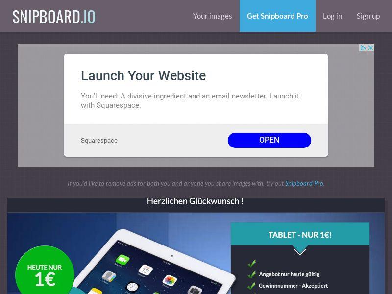 SteadyBusiness - iPad LP13 DE - CC Submit