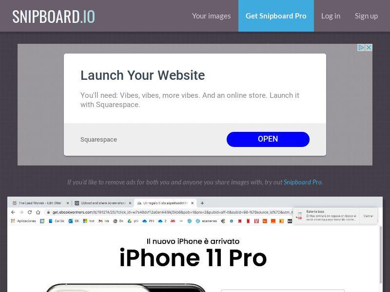 SteadyBusiness - iPhone 11 Pro LP25 IT - CC Submit