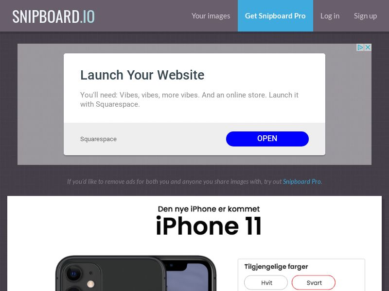 SteadyBusiness - iPhone 11 LP25 NO - CC Submit