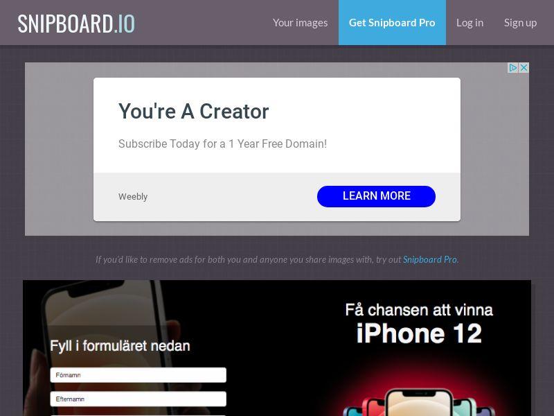 BigEntry - iPhone 12 v1 SE - CC Submit