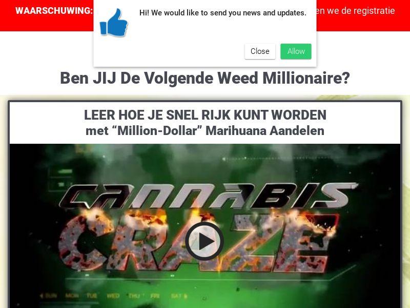 Weed Millionaire Dutch 1374