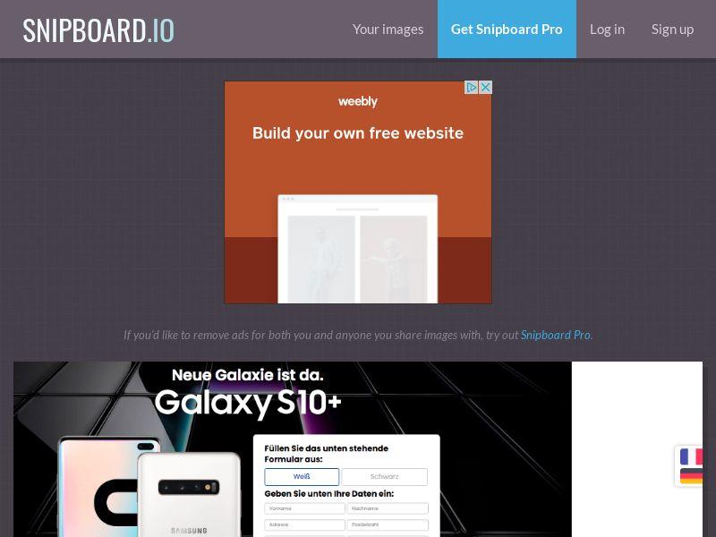 BigEntry - Samsung Galaxy S10 v5 CH - CC Submit (french/german)
