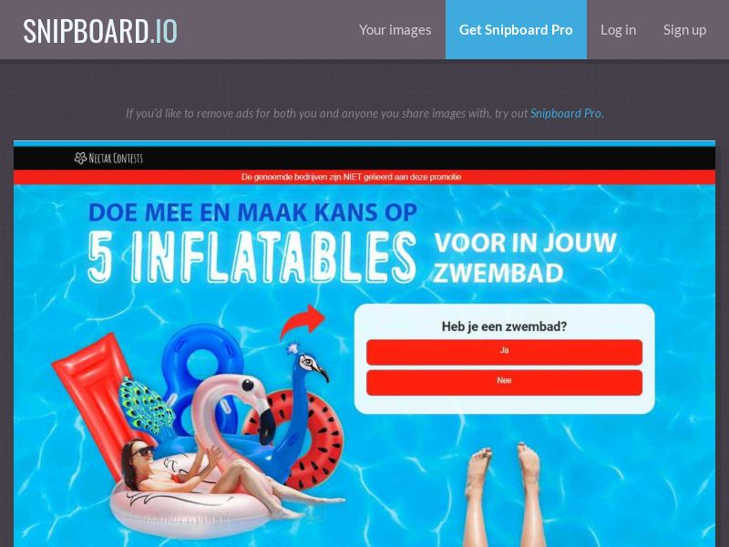 37590 - BE - NectarContests - Inflatables (dutch) (WithPrelander) - SOI