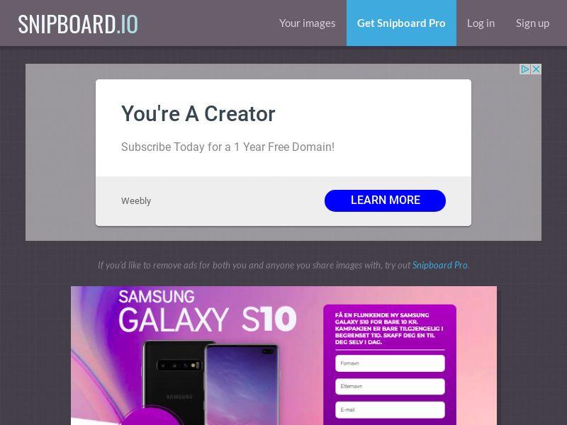 SteadyBusiness - Samsung Galaxy S10 LP21 NO - CC Submit