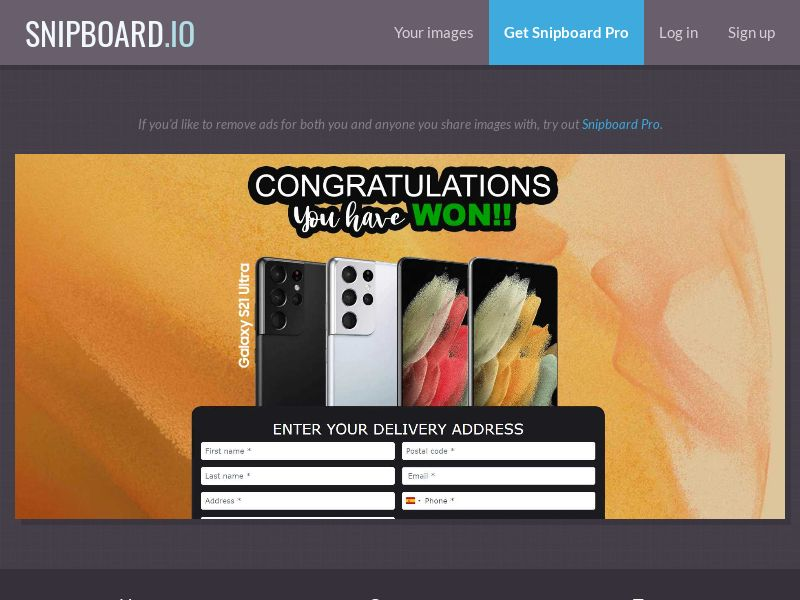 39802 - US - OrangeViral - Samsung S21 v2 - Only US - CC submit