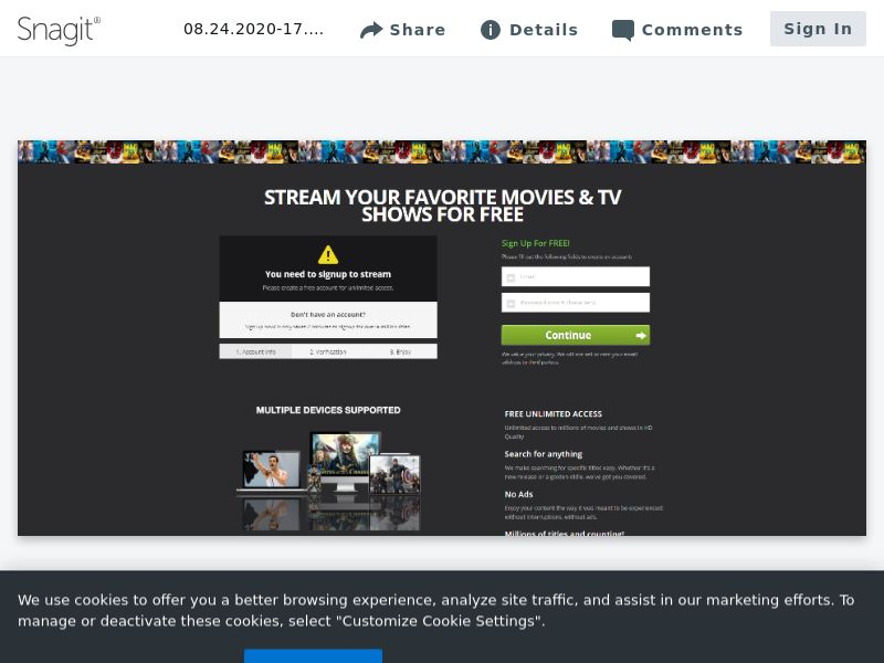 Stream Access Direct - INCENT - INTL