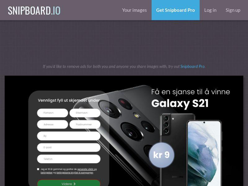 BigEntry - Samsung Galaxy S21 v1 NO - CC Submit