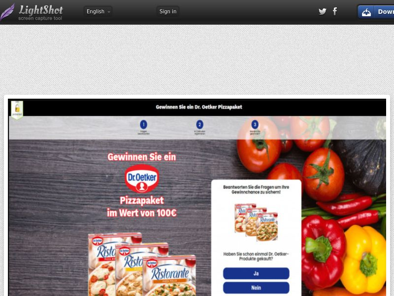 Wildleads - Dr. Oetker (DE) (CPL) (Personal Approval)
