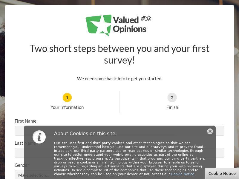 Valued Opinions Singapore DOI+1st Survey   SG