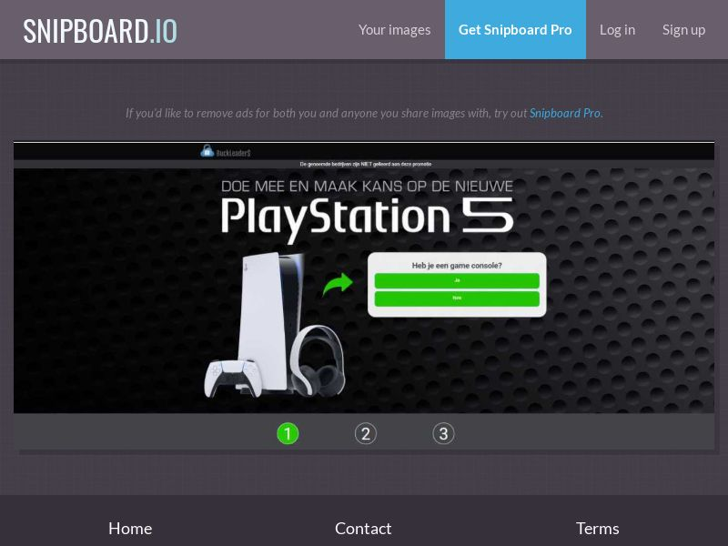 39647 - NL - Buckleaders - PlayStation 5 - CPL