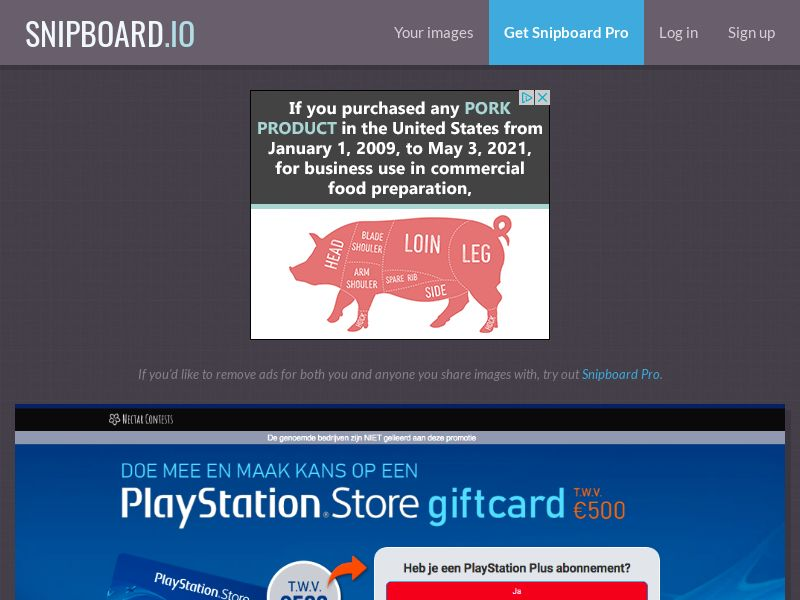 NectarContests - Playstation Store Giftcard (NL) (CPL) (Personal Approval)