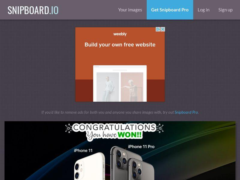 AbsoluteWinner - iPhone 11 & Pro (Black Swirl) US - CC Submit
