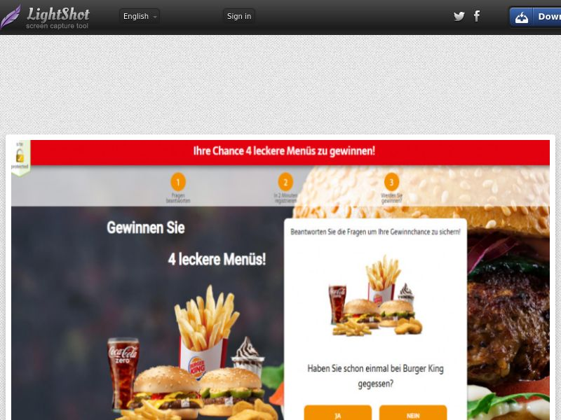 Wildleads - Burger King (DE) (CPL) (Personal Approval)