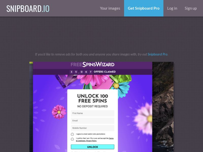 41653 - UK - Free Spins Wizard - traffic type confirmation - SOI