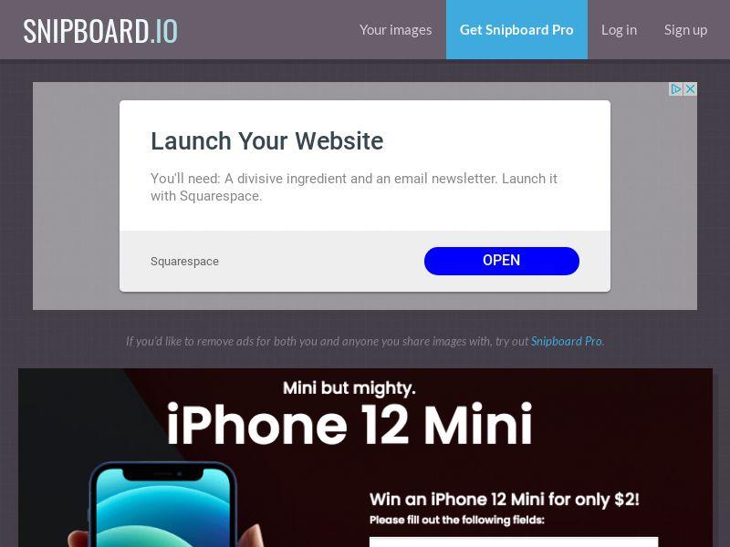 SteadyBusiness - iPhone 12 mini LP65 NZ - CC Submit
