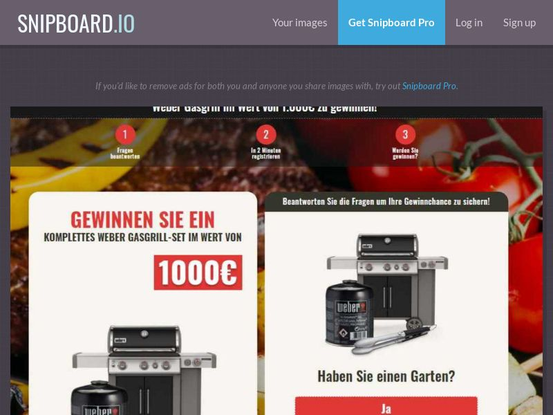 37445 - DE - WildLeads - Weber Grill set - SOI