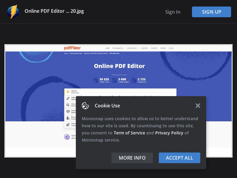 United States (US) - PDF Filler Editor - CPS (Responsive)
