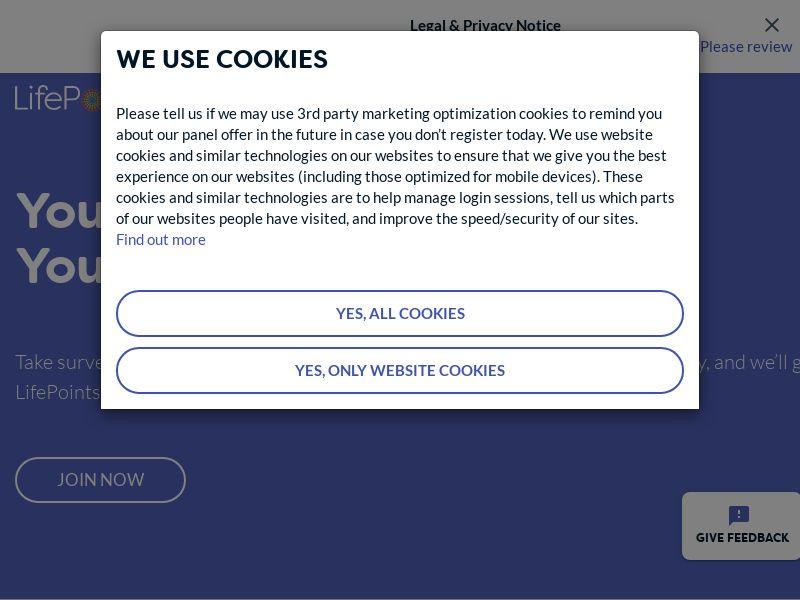 Lifepoints (Desktop) - Surveys/Market Research - US
