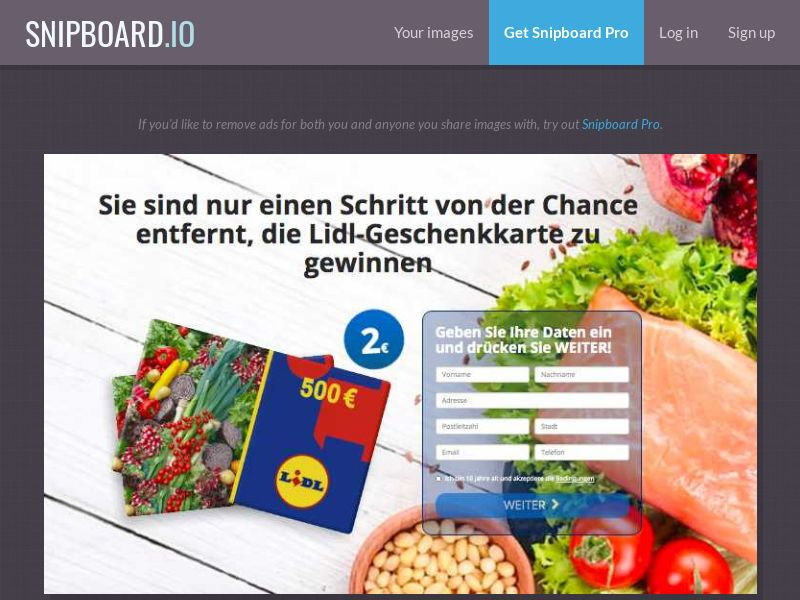 BigEntry - Lidl Supermarket Giftcard v1 DE/AT - CC Submit