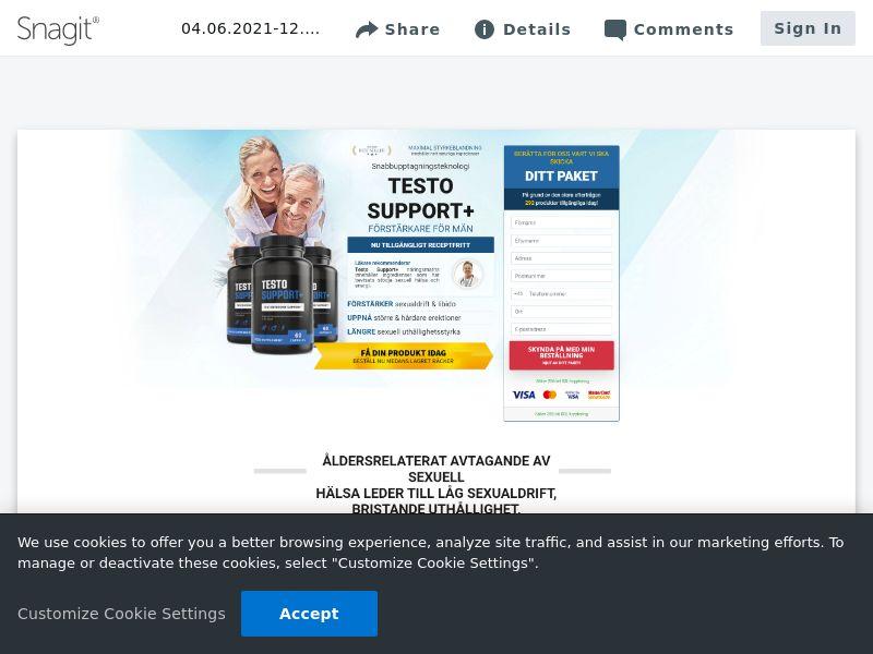 Testo Support   SE